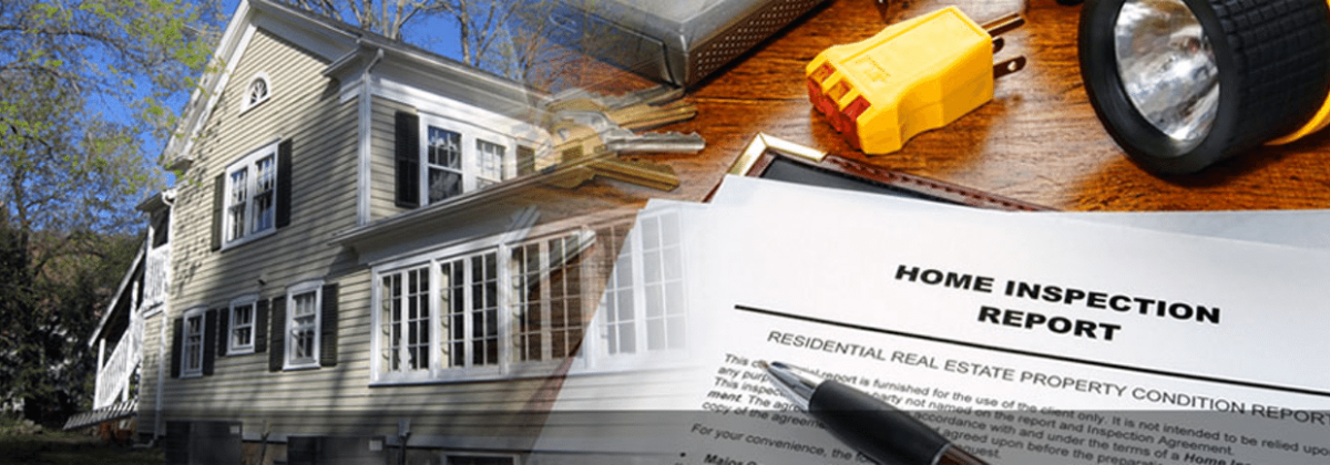 DISCOVERY Real Estate Inspection Services